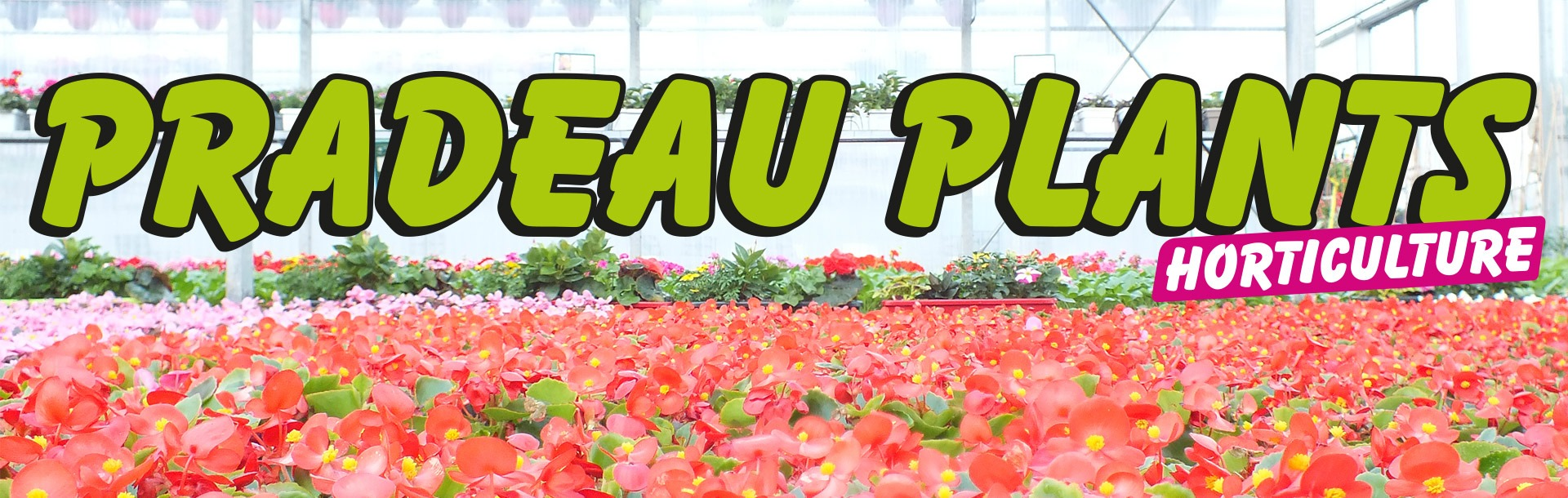 header Pradeau Plant